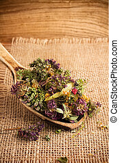 Herbal tea - Dry herbal tea and the wooden spoon