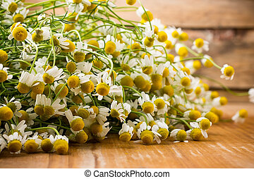 Chamomile. - Chamomile flowers on a wooden surface.