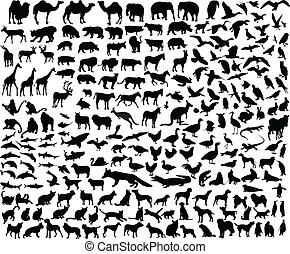big collection of different animal - illustration of big...