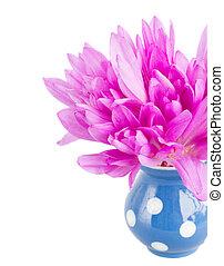 posy of meadow saffronin vase