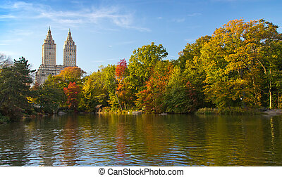 Fall Leaves in Central Park New York City