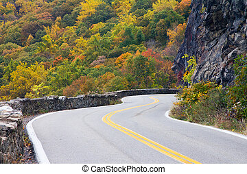 Windy Road to Colorful Fall Forest