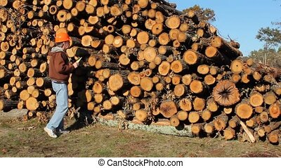 log inspector - man grading a stack of pine logs for...