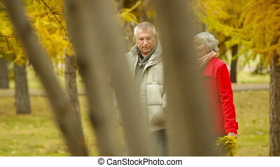 Retired Couple - Retired husband and wife walking and...