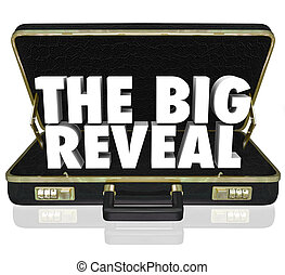 The Big Reveal Opening Briefcase Revealing Mystery Inside -...