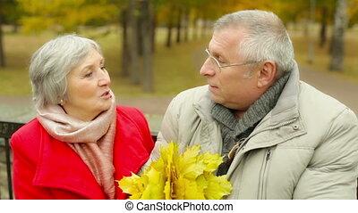 Talkative Seniors - Talkative senior friends enjoying a day...