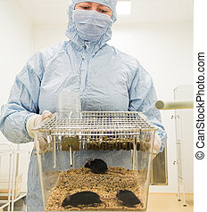 biotechnology researcher in protect wear with mouses