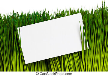 Business Card and green grass close up