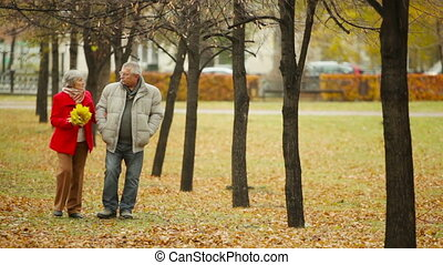 Positive Seniors - Positive senior couple spending an autumn...