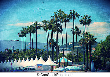 Palms in Cannes, France