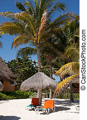 Beachfront Chairs - The tropical beaches of Playa Del Carmen...