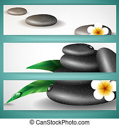 Spa Stones With Frangipani Flower.
