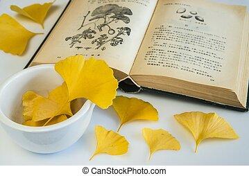Ginkgo, chinese medicine