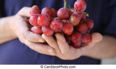 man holding grapes - a man pulls a grape from a large bunch