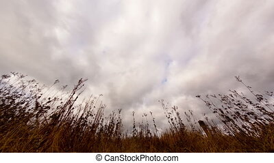 Clouds over dry grass. Fisheye lens Time Lapse