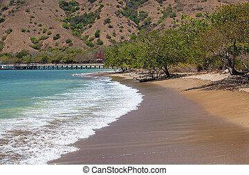 Komodo Island - The beautiful beach and pier on Komodo...