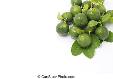 kalamansi in white background - kalamansi can use to make a...