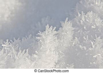 Snow Crystal - This image shows a extreme macro from a snow...