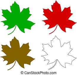 multicolored maple leaf series