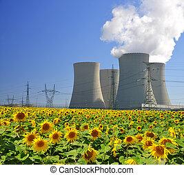 nucleare, potere, pianta