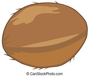 coconut - vector coconut isolated