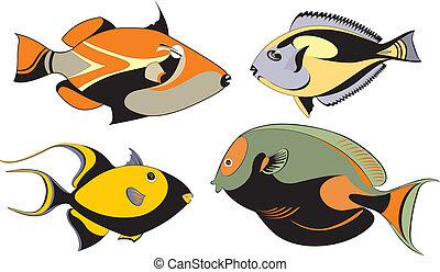 Vector original decorative fish set