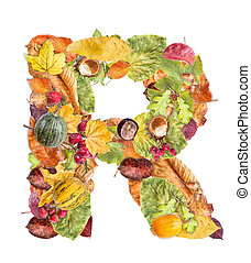 Letter R made of autumn colored leaves isolated on white...
