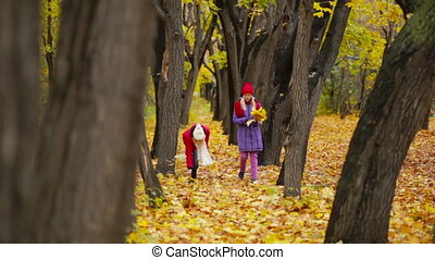 Maple Leaves - Pretty teen girls gathering fallen maple...
