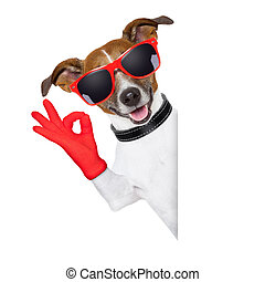 ok fingers dog with red gloves and glasses behind banner