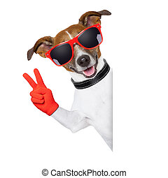 peace fingers dog - peace fingers dog with red gloves and...