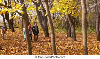 Sunny Autumn - Family of four spending their sunny autumn...