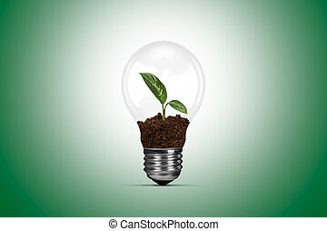 Light Bulb and Growing Green Plant - Plant with leaves...