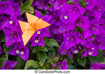 butterfly Origami with flower