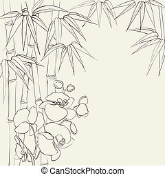 Orchid flowers and bamboo. - Beautiful orchid flowers and...