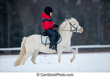 Pony and boy - riding horseback - Boy riding white pony in...