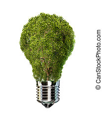 Light bulb with tree in place of glass. On white background.