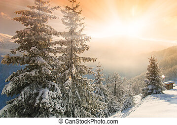 Morning glow in the winter mountains