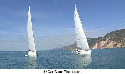 Sailing boats with open sails - Sailing boats navigating...