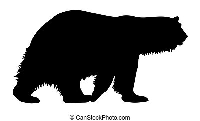 Polar bear - Vector illustration of polar bear silhouette
