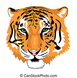 Tiger - Abstract vector illustration of tiger head