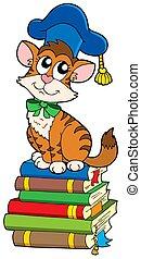 Cat teacher on pile of books