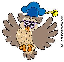 Flying owl teacher