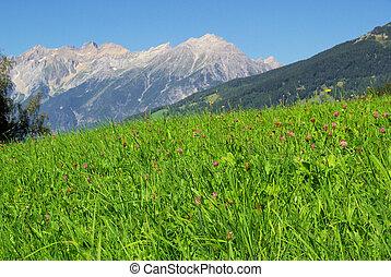Venet  mountain Venet 07