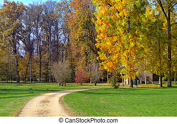 Footpath and trees with autumnal foliage in Italy. - Unpaved...