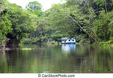 Amazon margin riverbank landscape and hut reflex...