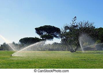 jardim, automático, irrigação