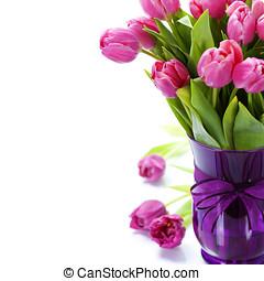 粉紅色, 鬱金香, 天, 情人是
