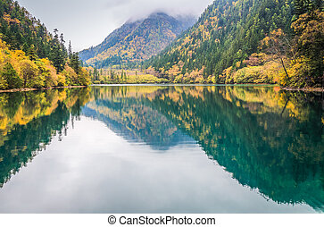 colorful lake in autumn - beautiful panda lake at jiuzhaigou...