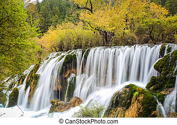 beautiful falls at colorful autumn in jiuzhaigou valley...