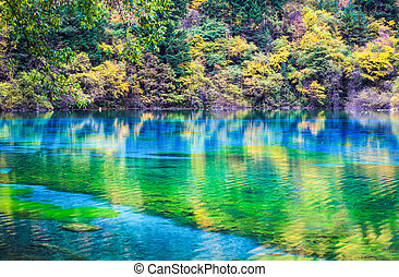 colorful lake in jiuzhaigou valley - colorful lake in autumn...